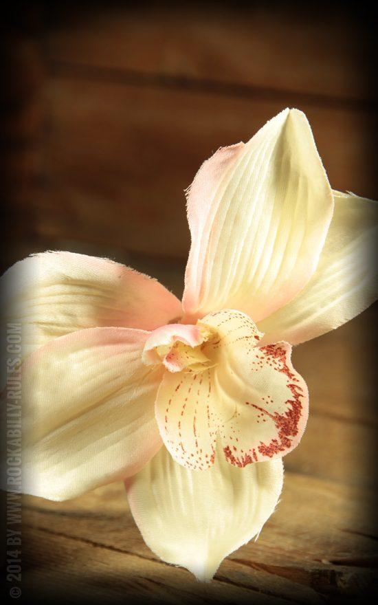 Wunderschöne weiße Orchidee für euren perfekten Tiki Vintage Haarstyle- (C) Rockabilly-Rules