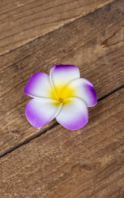 Pince à cheveux Plumeria Fleur dHawaii, violet