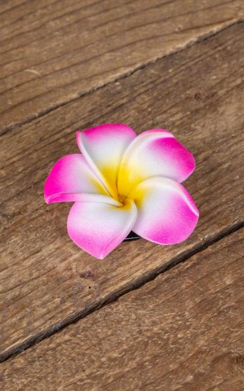 Hair clip Plumeria Hawaii flower, pink