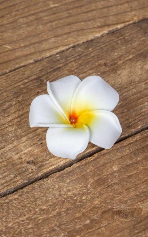 Hair clip Plumeria Hawaii flower, white