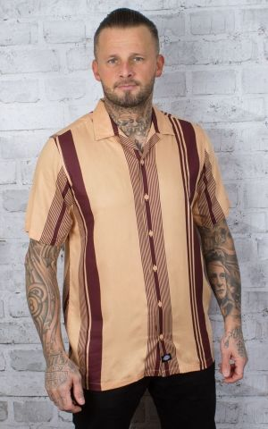 Dickies - chemise à manches courtes Forest Park, peach brulee
