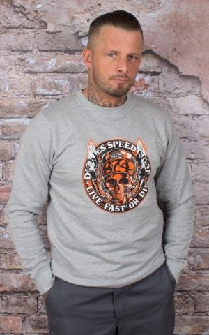 Dickies - Sweater Pullover Springlake, grau