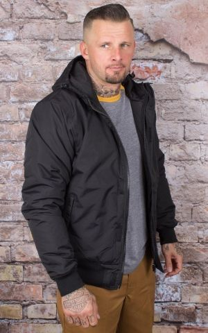 Dickies - Winter Jacket Cornwell