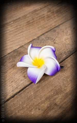 HairClip - Frangipani Classic Blossom, purple-white, medium
