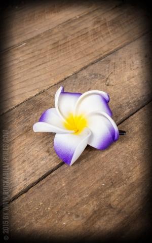 Haarclip - Frangipani Classic Blüte, lila-weiß, mittel