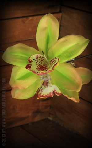 Hairclip Orchid green