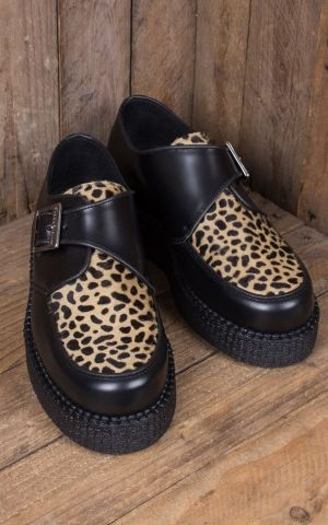 Steelground Creeper - Leopard